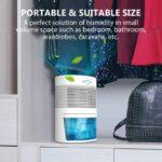 LONOVE Dehumidifier - 2000 Cubic Feet