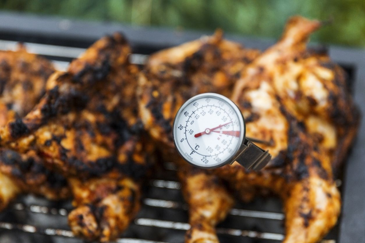 Best Grill Thermometers