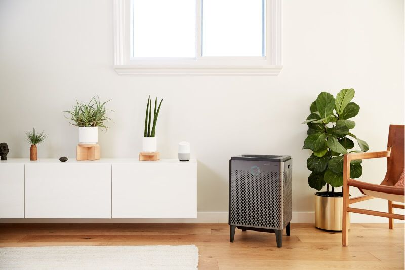 Refresh Your Home Atmosphere with a Practical Plug-In Air Purifier