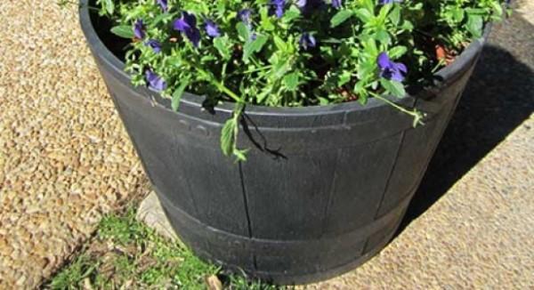 planter box ideas whiskey barrel