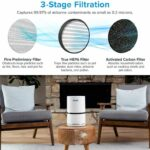 LEVOIT H13 True HEPA Filter Purifiers for Home Allergies and Pets