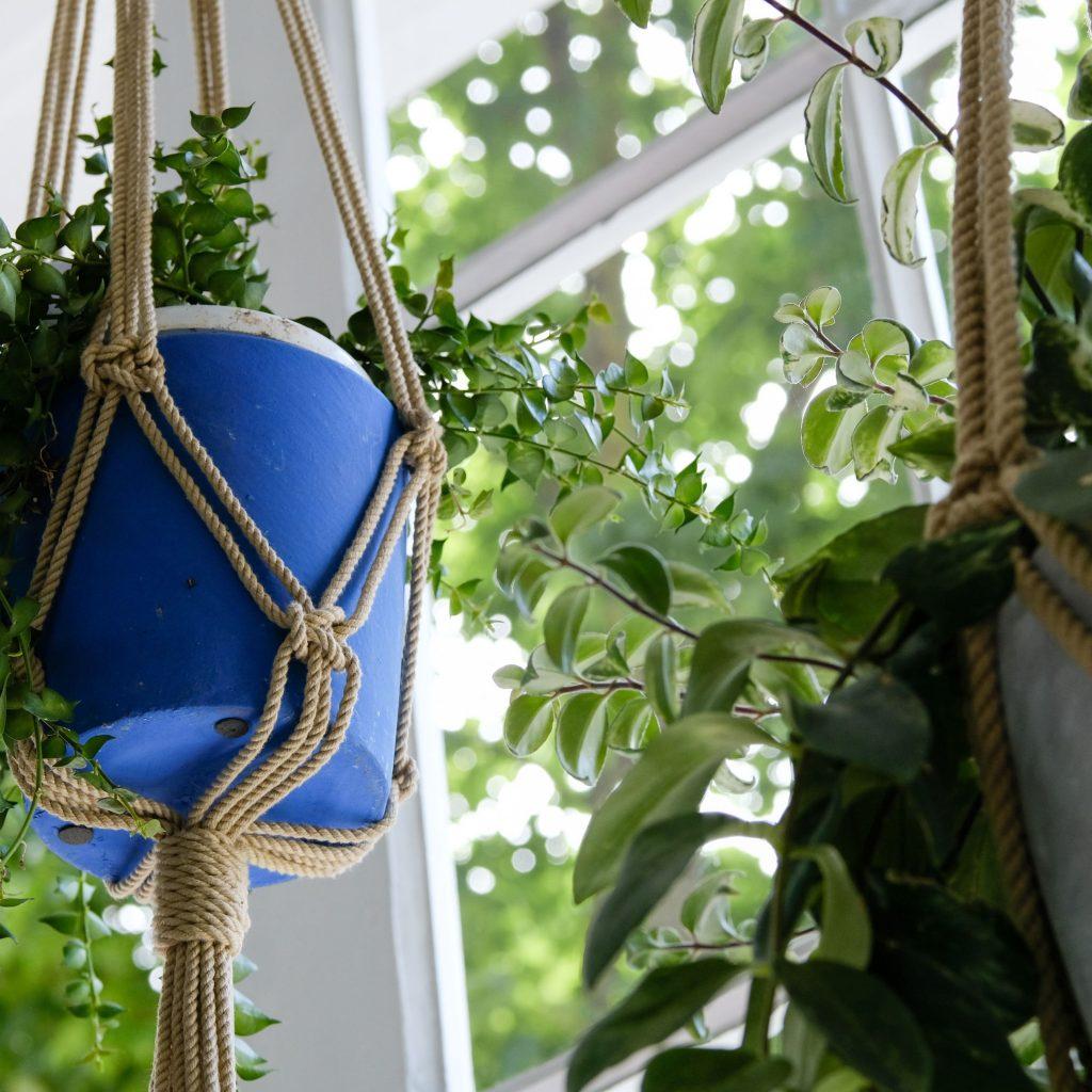 planter box ideas Macrame Hanging Plant Holder