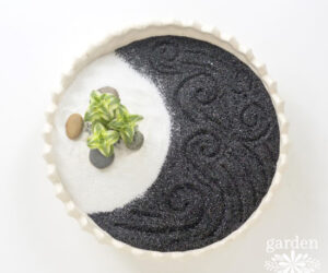How To Make Your Own Mini Zen Garden From Scratch