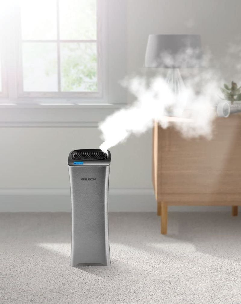 Save Space And Energy With Humidifier and Air Purifier Combos