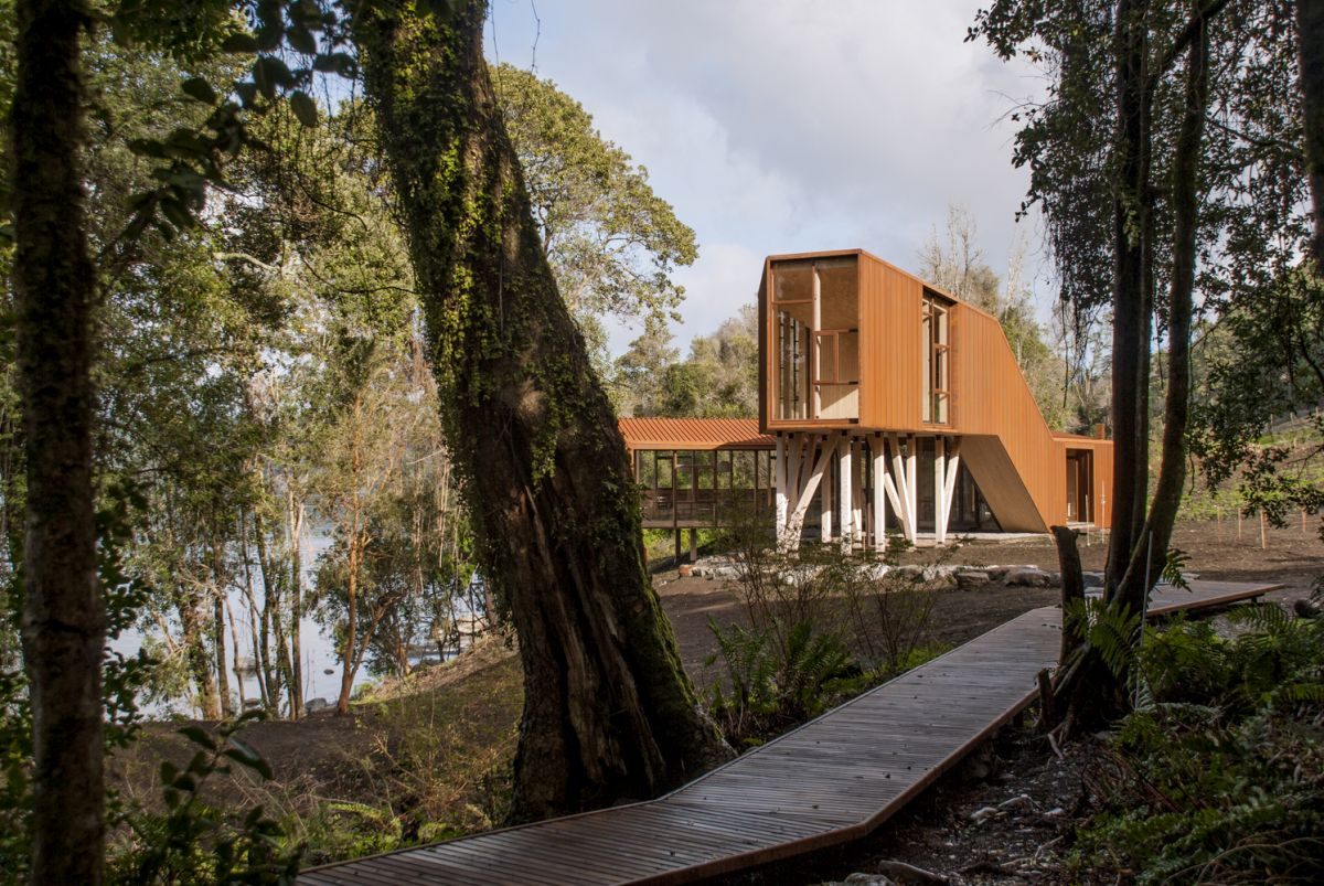 A wooden pathway leads down through the trees, connecting the house to its beautiful surroundings
