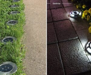 Upgrade Your Backyard Landscape Pathway With Best Lights For Outdoor