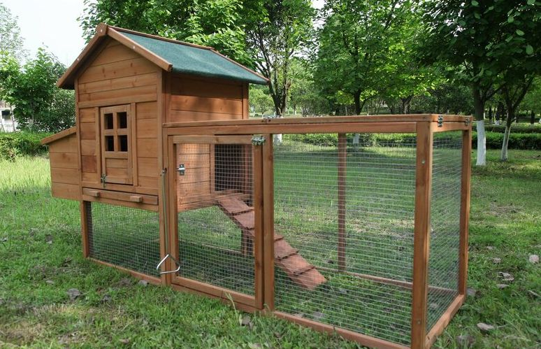 Cool Home For Your Feathered Friends - Best Chicken Coops You Can Buy Right Now
