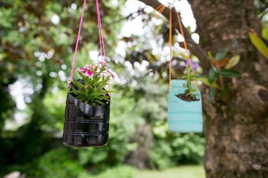 Hanging planters made of bottles