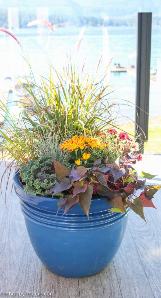 DIY Fall Planters