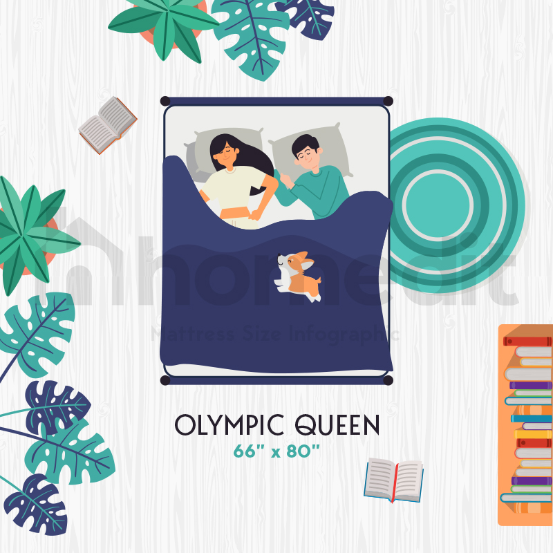 All About the Olympic Queen Bed