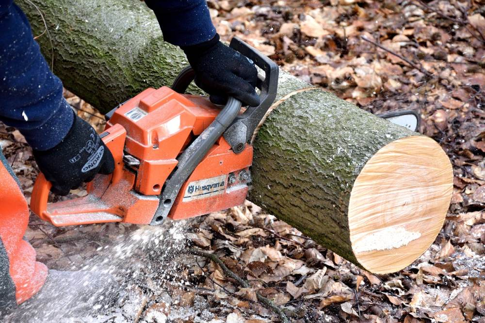 13 of the Best Types of Wood Cutting Tools