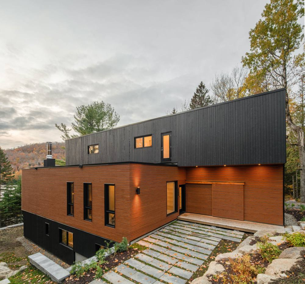 The dark sections help to outline the geometry of the house and give it a modern appearance