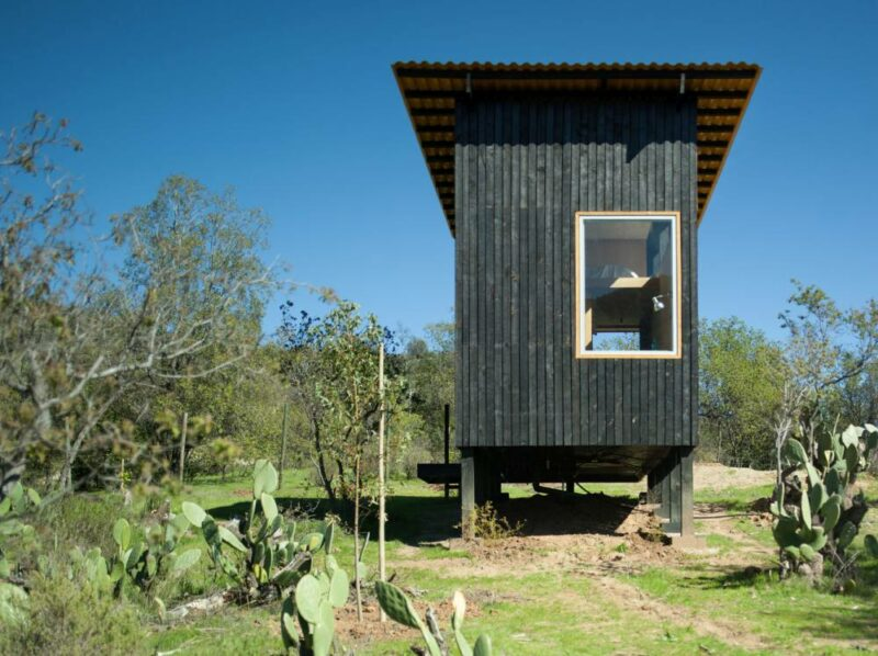 5 Small Modern Cabin Design Ideas To Inspire Your Next Off-The-Grid Project