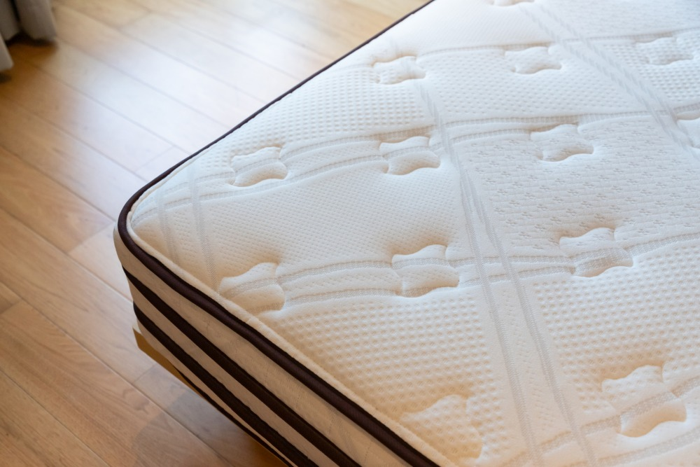 Natural Methods for Repelling Bed Bugs