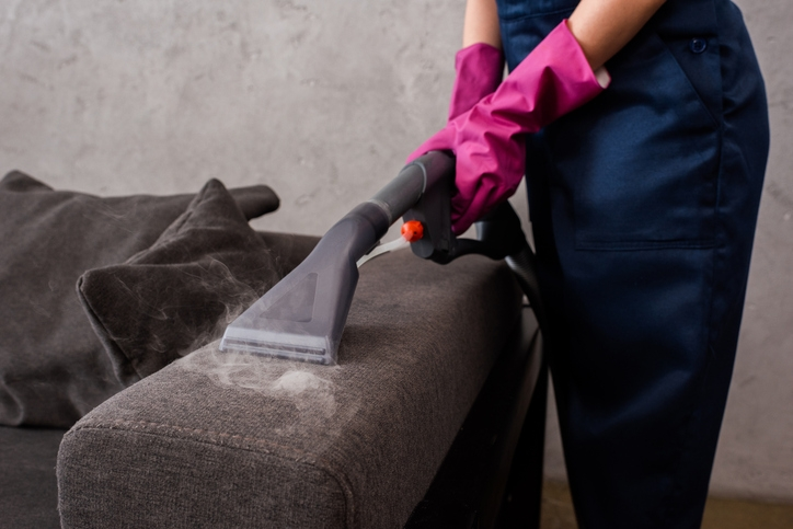 The Concept of the Steam Cleaner