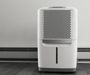 Beat The Humidity With One Of The Best Quietest Dehumidifiers