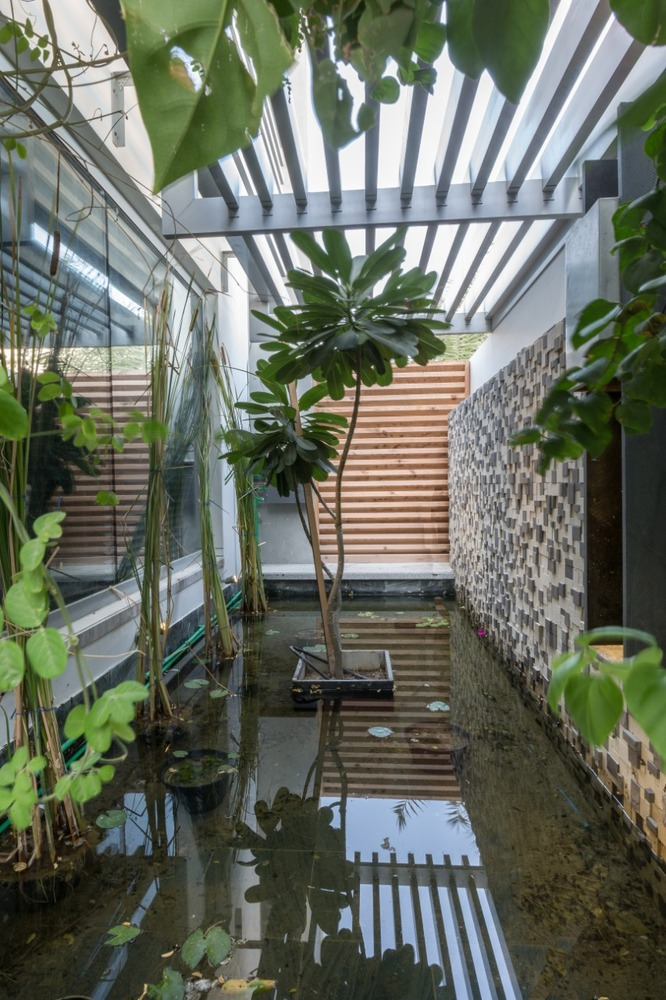 Small courtyards like this one bridge the gap between the indoor and the outdoor areas