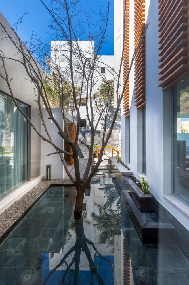 This small courtyard brings the outdoors closer to the house without diminishing privacy