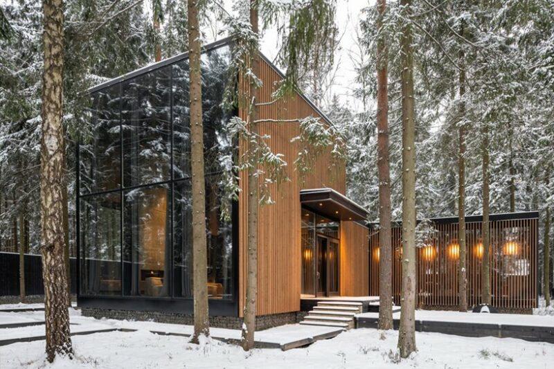 一个由松树和豪华饰面包围的强大森林房子