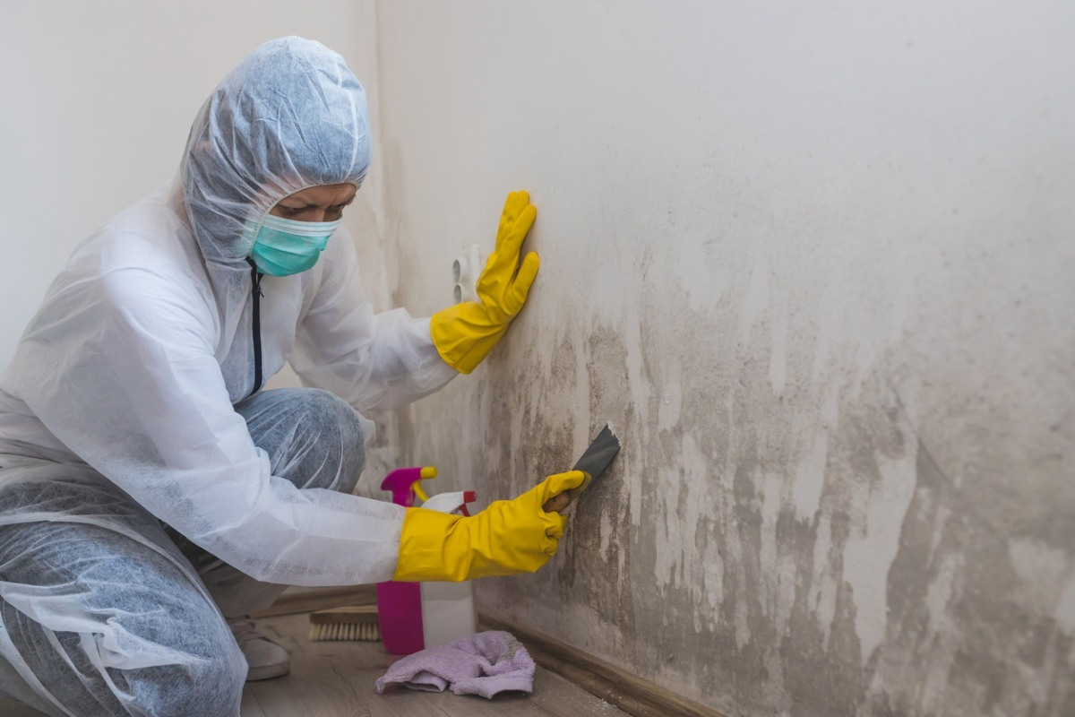 How To Get Rid Of Mold On Indoor Walls