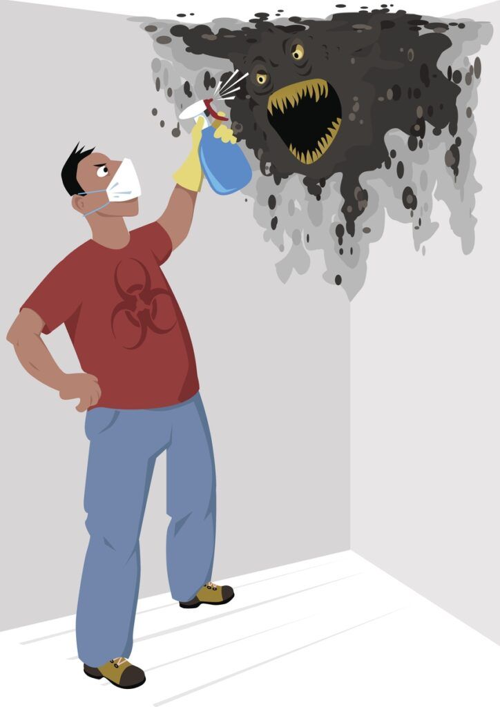 How To Get Rid Of Mold With DIY Methods
