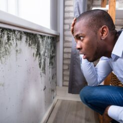 Preventing Mold With Air Purifiers