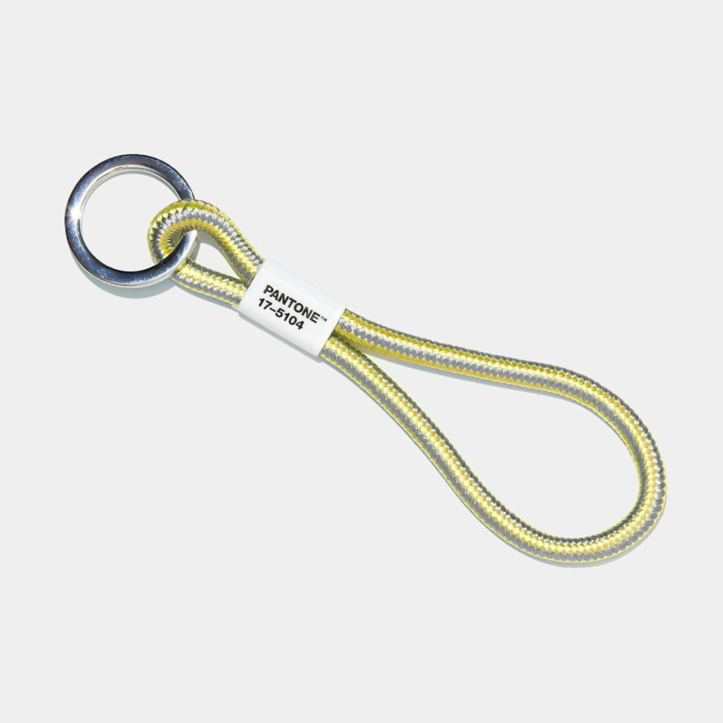 pantone color of the year key ring