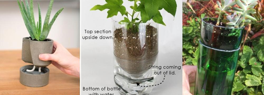 DIY Self-Watering Planters