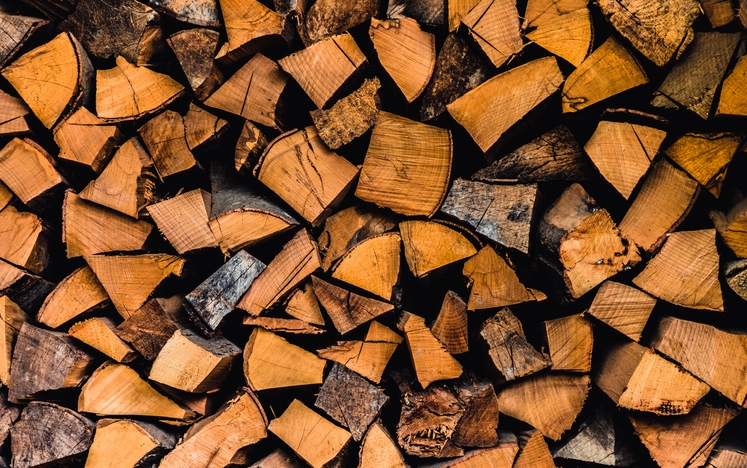 Can Firewood Get Rained On?
