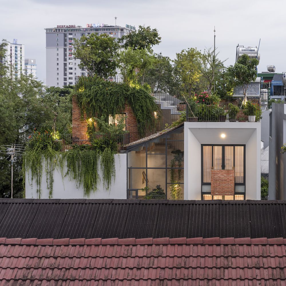 The entire rooftop of the building was transformed into a beautiful and lush garden