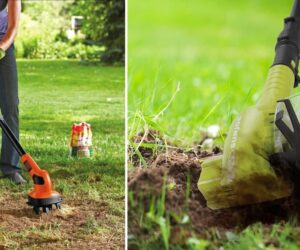 The Best Small Garden Tiller for Your Modest Property Healthy Soil