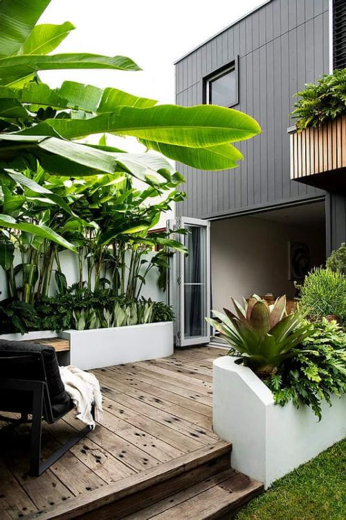 Greenery adds character