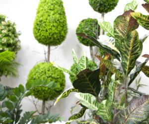 通过人造室外植物来装饰绿色植物