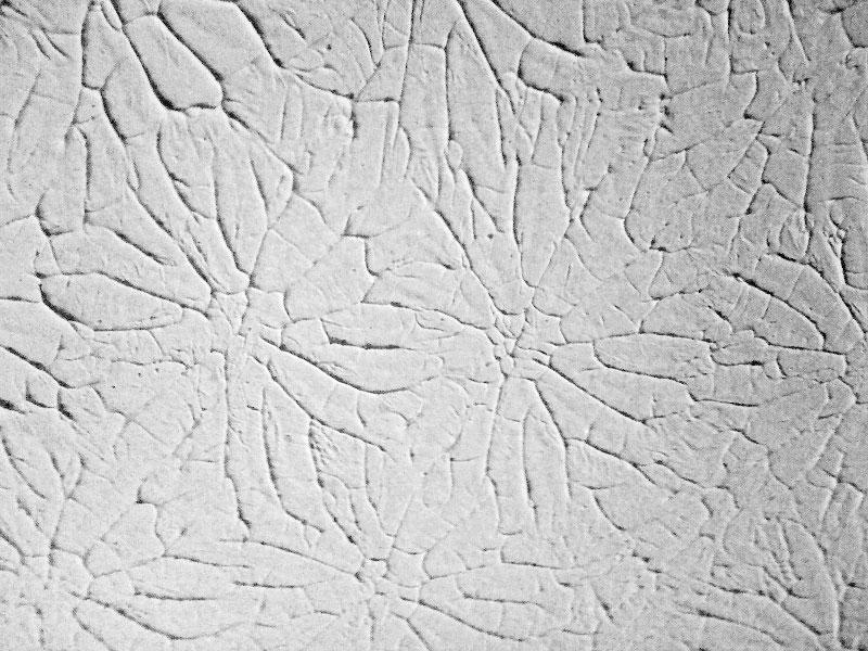 Rosebud wall texture
