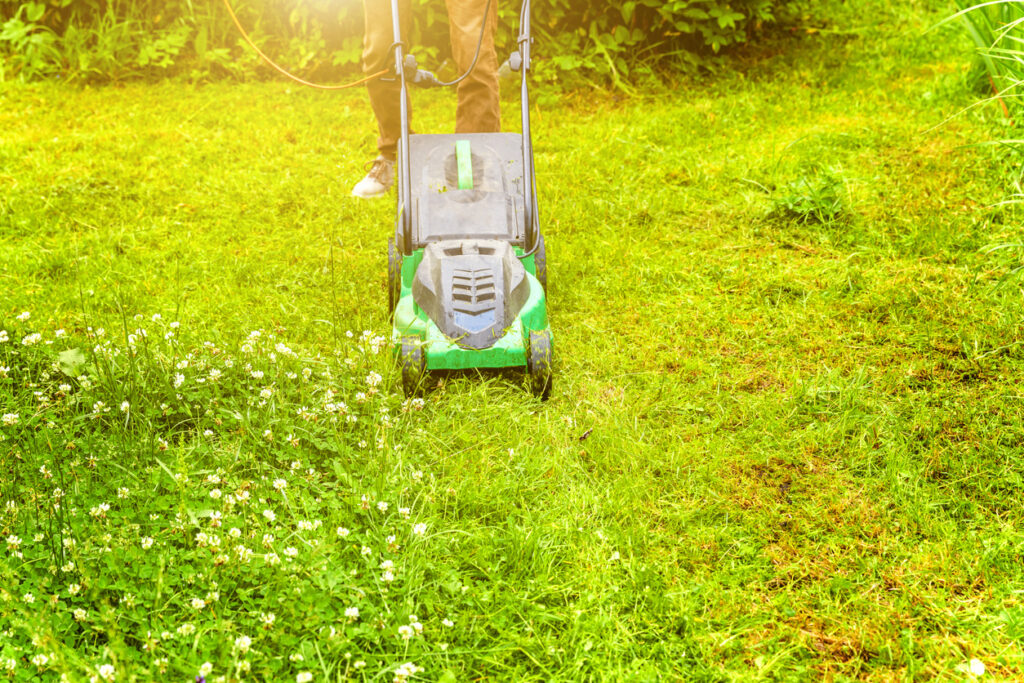 How to choose an electric mower