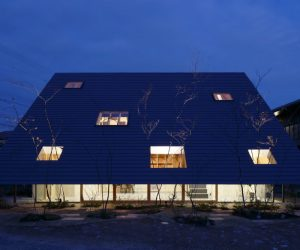 A Triangle-Shaped House With Giant Eaves