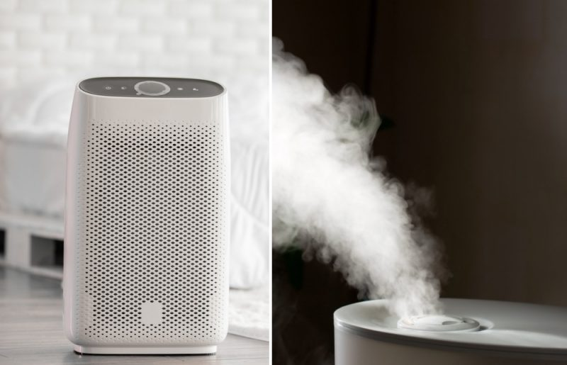 Air Purifier VS Humidifier: What's the Difference?