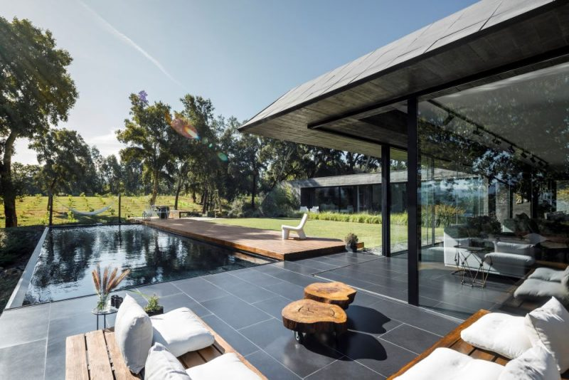 A House With Sloped Facades Squeezed Between Cork Oak Trees