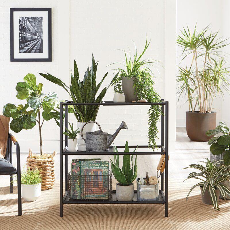 Hyrum Shelf Plant Shelf Stand