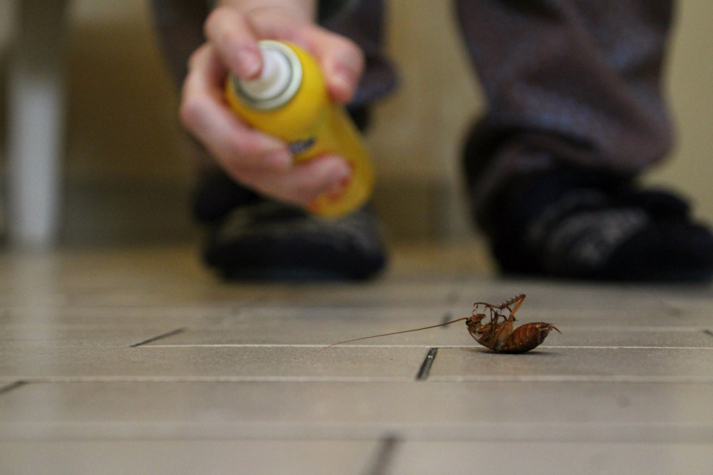 Killing Bugs More Effectively