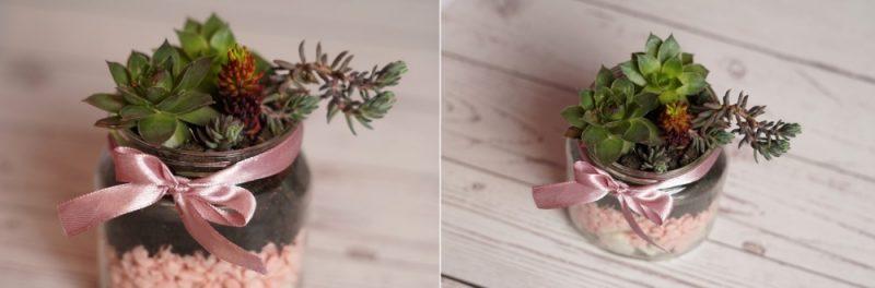 DIY Succulent Planter Inside A Small Mason Jar