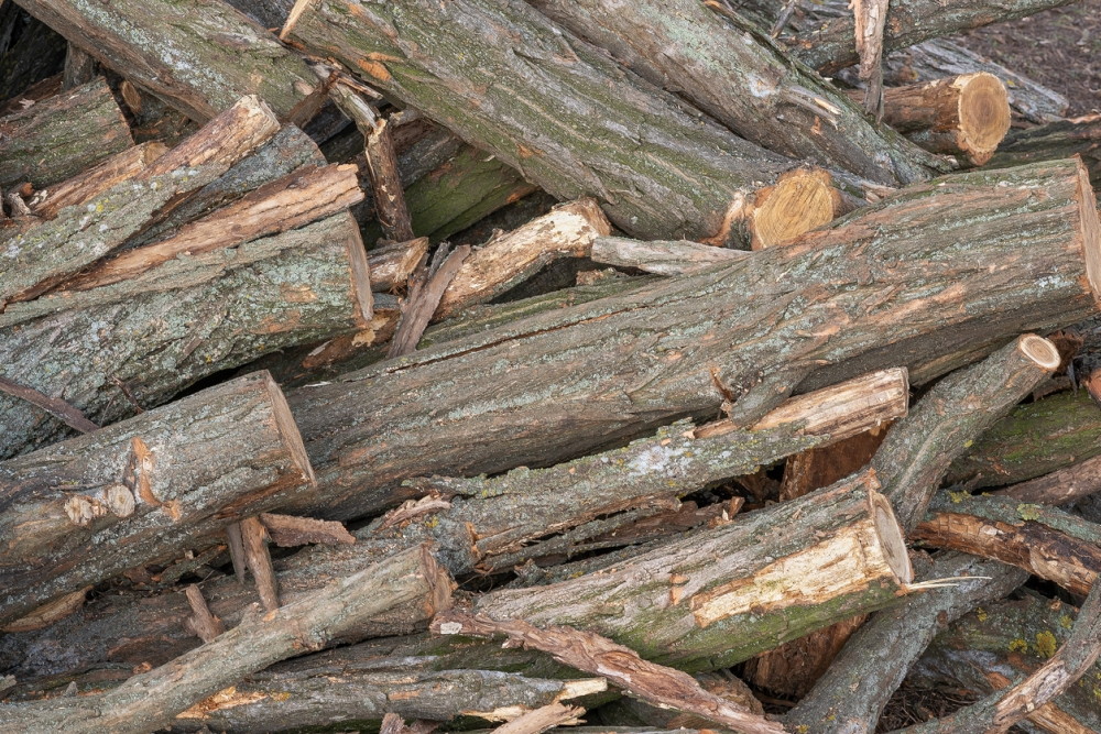 ¿Cuánto cuesta un palo de madera?