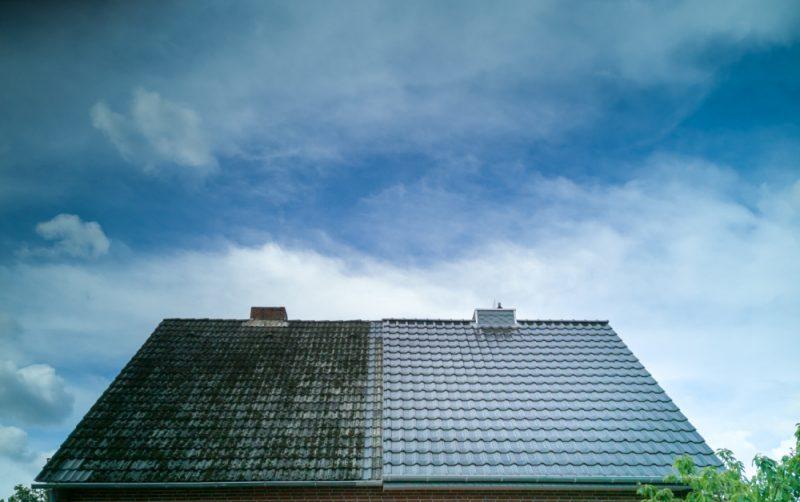 如何从屋顶移除苔藓