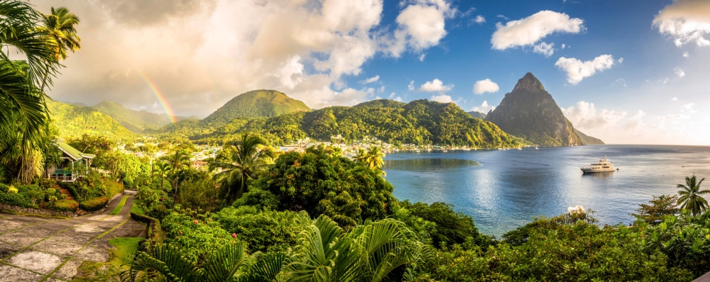 History Of The Tropical Landscape