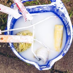 Water-based (Latex) Paint