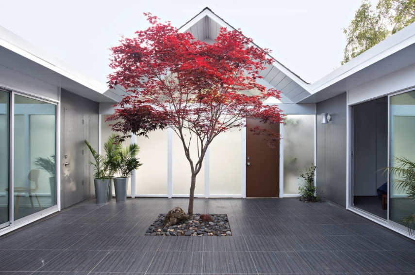 small trees for landscaping