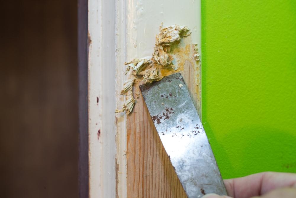 paint scraper