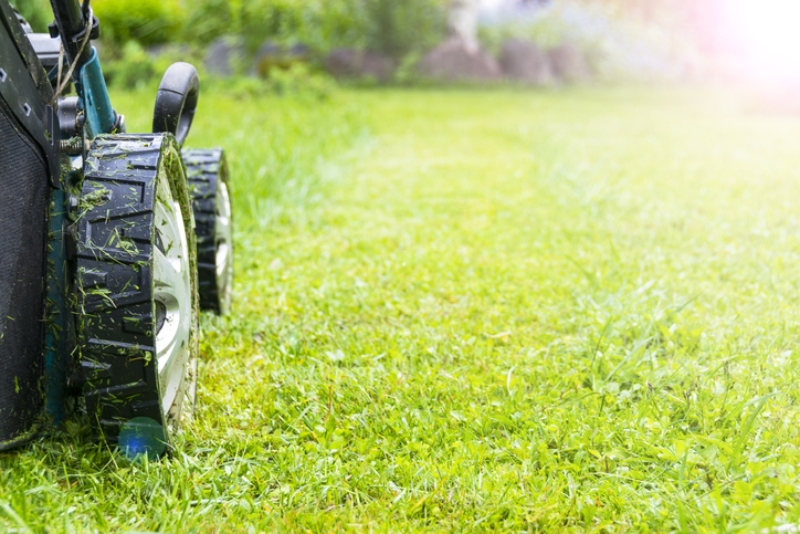 Choosing the Best Ego Lawn Mower To Keep The Garden Well-Manicured