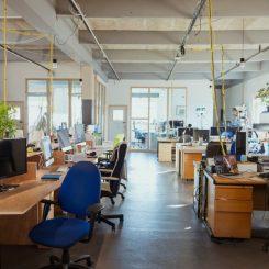 Defining America's Ideal Workspaces