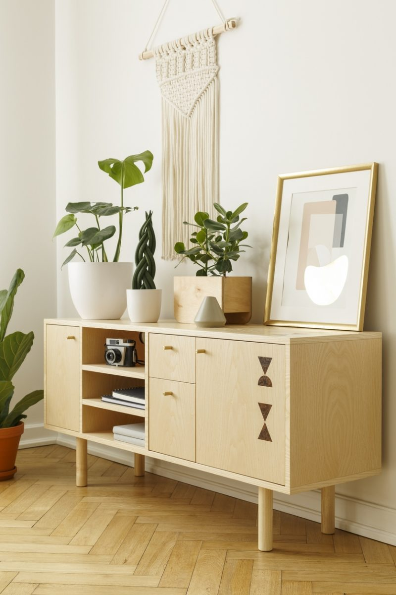 Add Style And Extra Storage to Your Home with a Mid-Century Cabinet